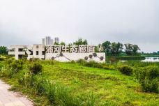 蒲河国家湿地公园-沈阳-CarolNocturne