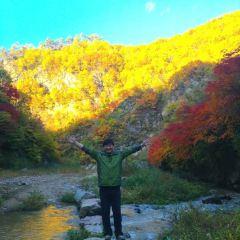 Yulongxi Primeval Forest Park User Photo