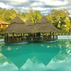 Rainforest Ancient Tea House Manor User Photo