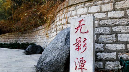 Wuying Tam
