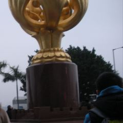 Golden Bauhinia Square User Photo