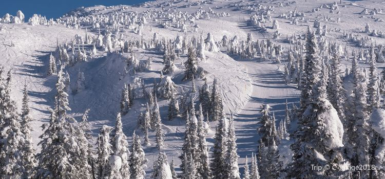 Big White Ski Resort1