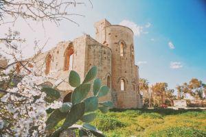 Nicosia,Recommendations