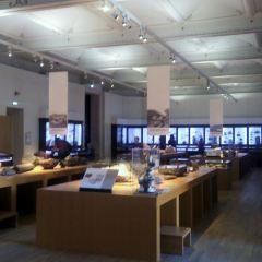 南特自然歷史博物館用戶圖片