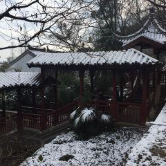 Yushan Park User Photo