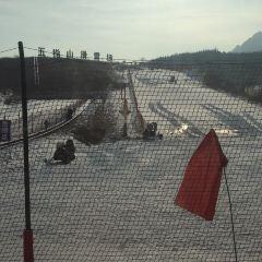 太行五指山滑雪場用戶圖片