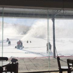 徂徠山滑雪場用戶圖片
