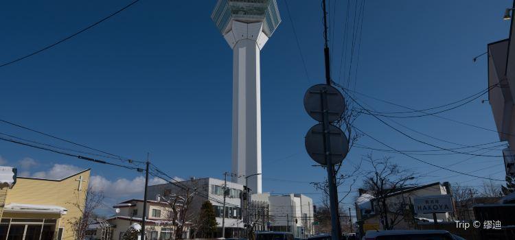 Goryokaku Tower3