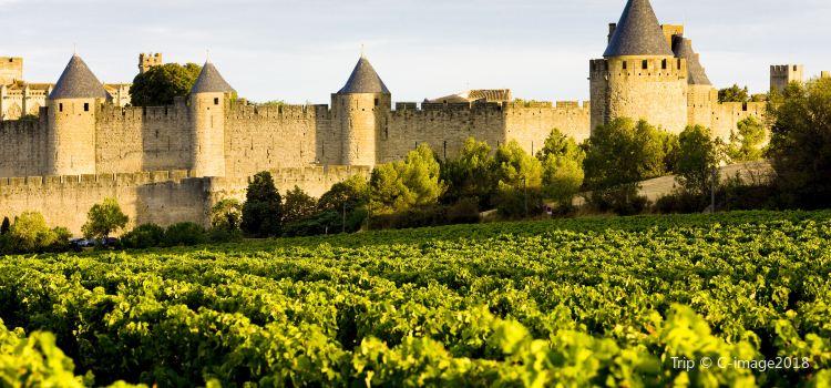 Carcassonne Castle3