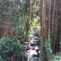 Gunung Kawi User Photo