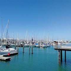 Auckland Sailing Club User Photo