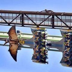 Universal Studios Japan User Photo