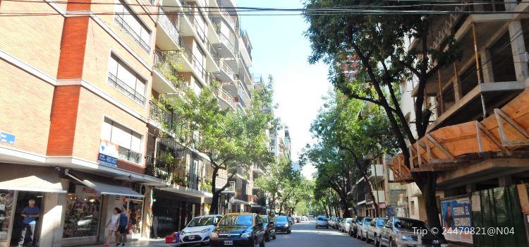 Palermo Soho2