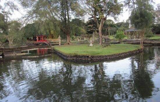 莉莉烏卡拉尼公園2