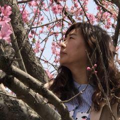 Yueping Park User Photo