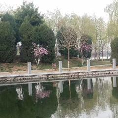 Jiangkou Niaozhou Nature Reserve User Photo