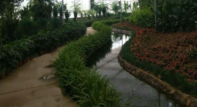 熱帶植物動物園1