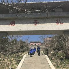 孔子廟用戶圖片