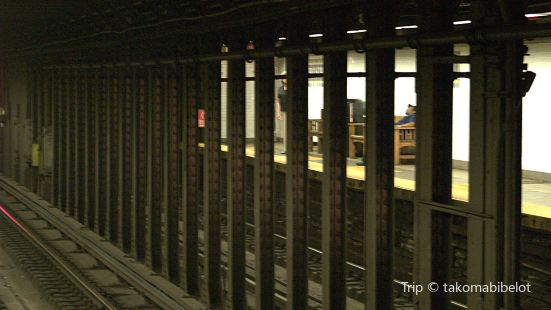 59 St-Lexington Av Station
