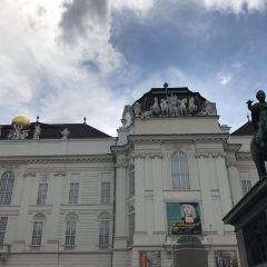 維也納音樂廳用戶圖片
