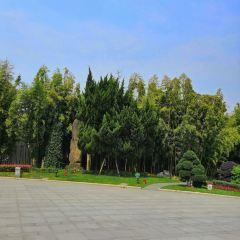雄鎮北門 景觀台 用戶圖片