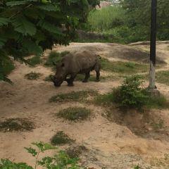 Songkhla Zoo User Photo