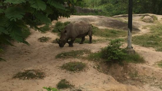 Songkhla Zoo