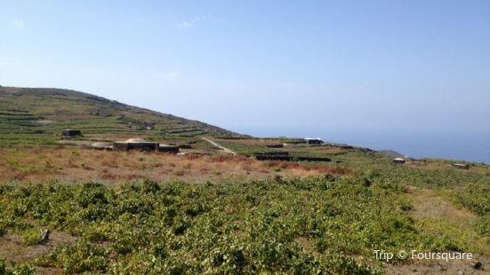 Mueggen - L'Isola nell'Isola