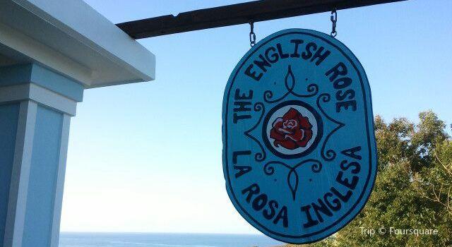 The English Rose / La Rosa Inglesa1