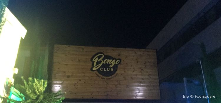Bongo Club1