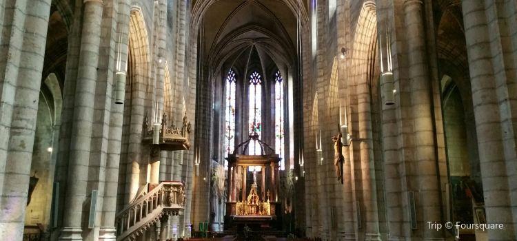 Collégiale Saint-Salvy