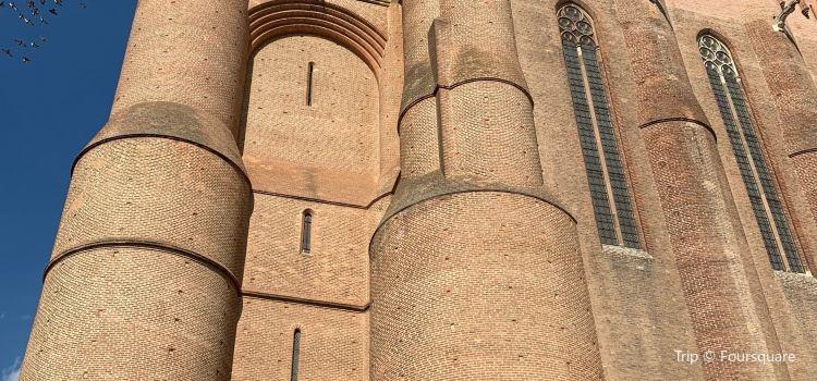 Cathédrale Sainte-Cécile1