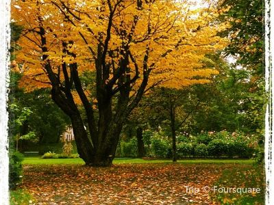 哈利法克斯公共花園