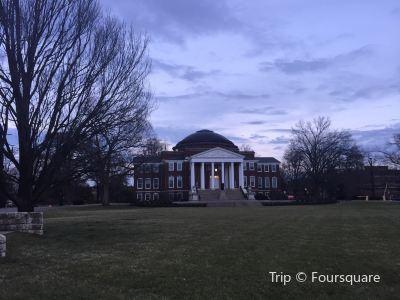 路易士維爾大學