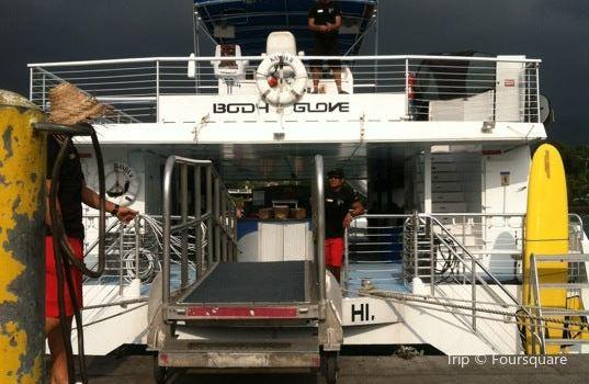 Body Glove Cruises1