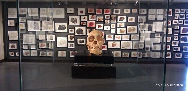 Origins Centre Museum1