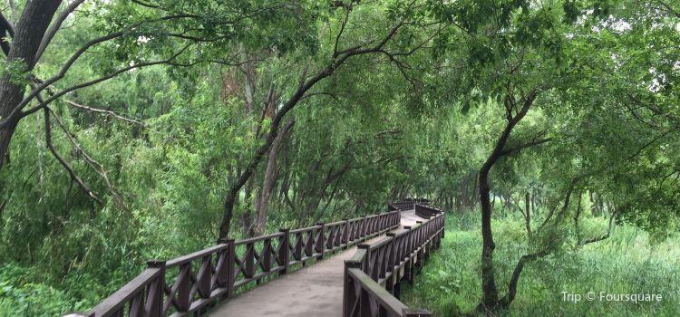Gwangjuho Lake Eco Park1