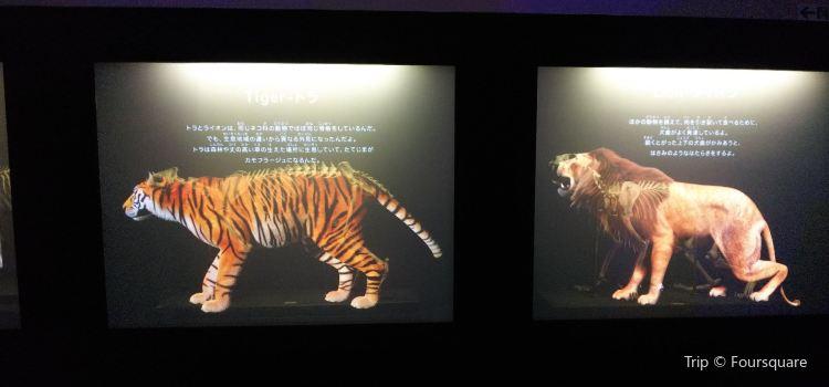 Fukuoka City Science Museum1