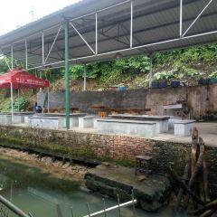 仙樂鄉村旅遊區用戶圖片