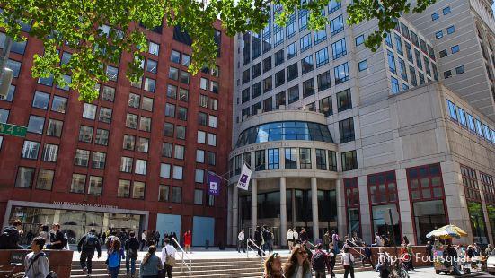 NYU Stern Executive MBA program