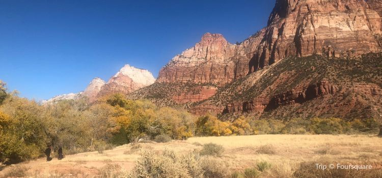 Watchman Trail2