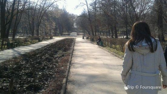 Parcul Alunelul