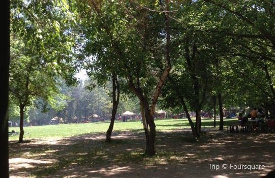 Parque Padre Hurtado1