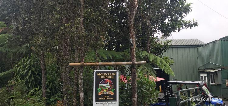 Mountain Thunder Coffee Plantation2