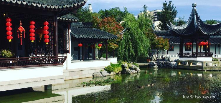 Dunedin Chinese Garden1