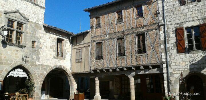 Castelnau-de-Montmiral3