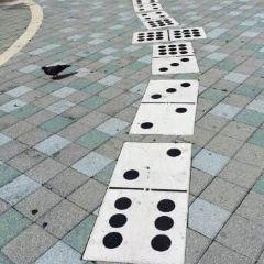 Domino Park User Photo
