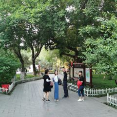 紅山公園用戶圖片