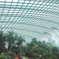 Flower Dome User Photo