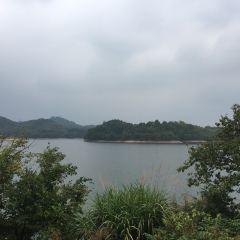 通濟湖用戶圖片